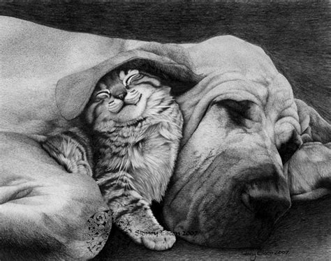 lovely dog drawings  inspiration