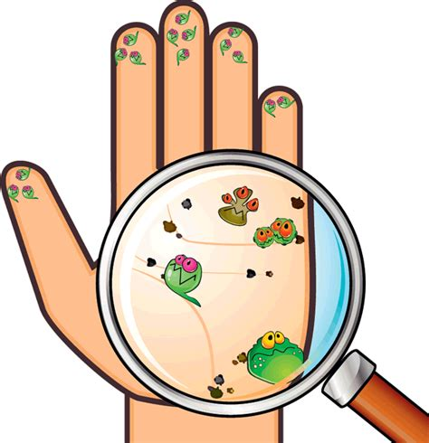 dispense microbiologia enfermedades por manos sucias texquiplas pisolimpio
