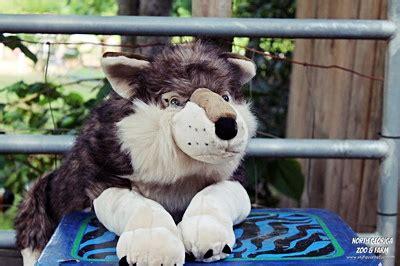 wolf merchandise north georgia zoo petting farm