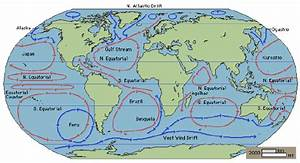 The Major Ocean Currents  The Red Arrows Illustrate Warm