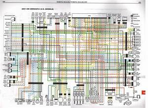2004 Cbr600rr Wiring Diagram