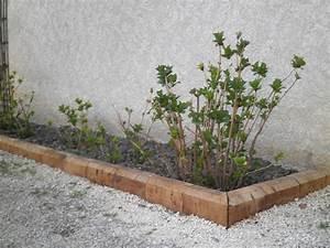 Bordure De Jardin Bois : awesome bordure jardin bois exotique contemporary ~ Premium-room.com Idées de Décoration