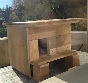 Maison Pour Chat Extérieur : little cat house petite maison pour chat 1001 pallets ~ Premium-room.com Idées de Décoration