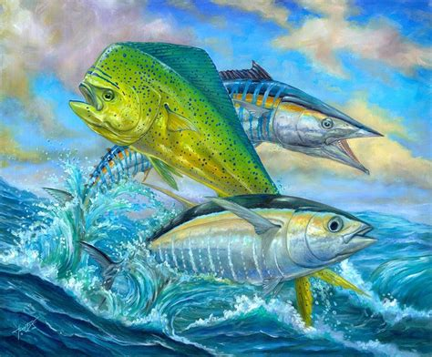 34 Best Images About Saltwater Sport Fish Illustrations