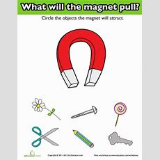 Introduction To Magnets  Worksheet Educationcom