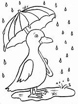 Coloring Rainy Duckling Today sketch template