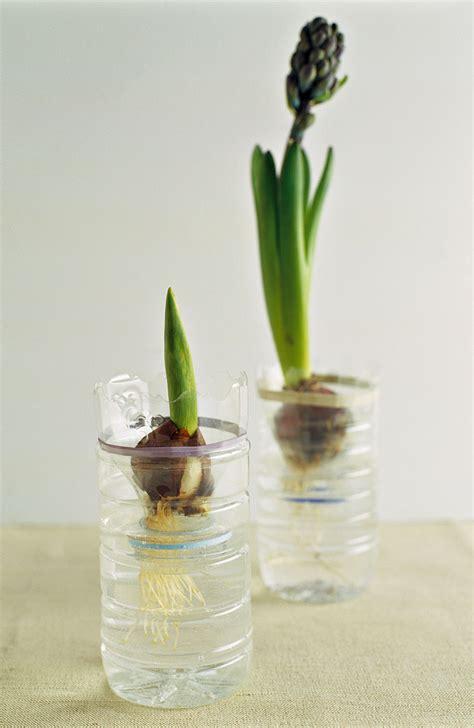 vasi con bottiglie plastica riciclo creativo arredo giardino con fioriere di plastica