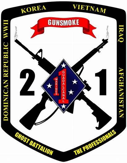 Marines 1st Battalion 2nd Marine Unit Vietnam