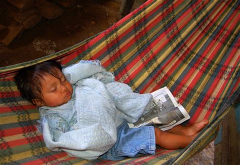 Baby Hammock For Sleeping by Pariwana Hostels 187 The Of Traveling In The With