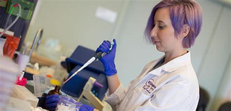 Molecular Oncology & Tumor Immunology Phd Training Program. Percentage Of High School Graduates That Go To College. Food Temperature Log Template. Volleyball Practice Plan Template. Top Journalism Graduate Schools. Unt Toulouse Graduate School. Law School Graduation Cap. Colorado State University Graduate Admissions. High School Graduation Party Theme Ideas