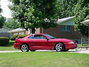 aaron_98_cobra 1998 Ford Mustang Specs, Photos, Modification Info at CarDomain