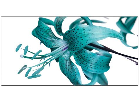 modern for sale cheap large teal canvas prints of a tiger flower