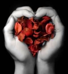 schöne liebessprüche kurz 1 liebessprüche schöne kurze liebessprüche ich liebe dich sprüche traurige