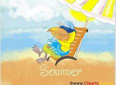 Sommerbilder kostenlos für ComputerDesktop
