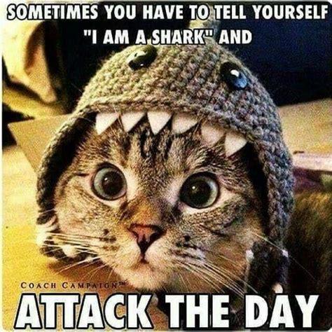 Meme anniversary happy funny memes meow kitty cat hipster generator cats humor animal memecreator don animals care joke worker fun. These 20 Motivational Memes Will Help You Carpe Diem ...