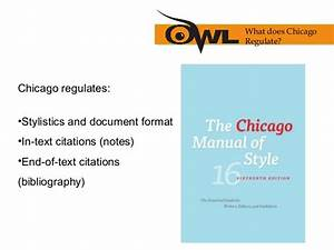 Cms Style Paper Example  Chicago Style Paper Format