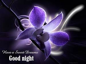 Have A Sweet Dream Purple Flower Good Night Image - Images ...
