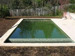algues vertes dans votre piscine comment les combattre With comment faire revenir une piscine verte