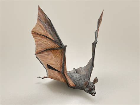 flying bat  model ds max files   modeling