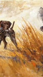 German Shorthaired Pointer Hunting Wallpaper Images ...