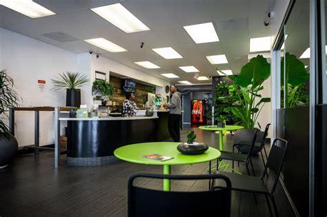 green door san francisco green door 159 fotos 248 beitr 228 ge cannabis kliniken