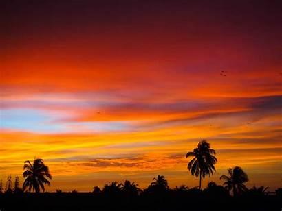 Lanka Sri Sunset Travel Negombo Budget