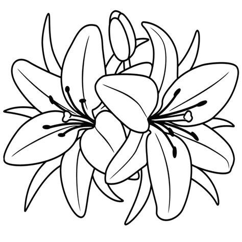 fiori disegni 9923 immagini di fiori da colorare kelseyjean co avec