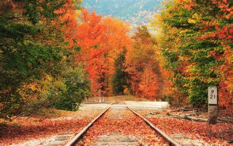 fall photos amtrak rolls out vintage trains for fall foliage lovers travel leisure