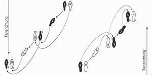 Bachata Basic Steps Diagram