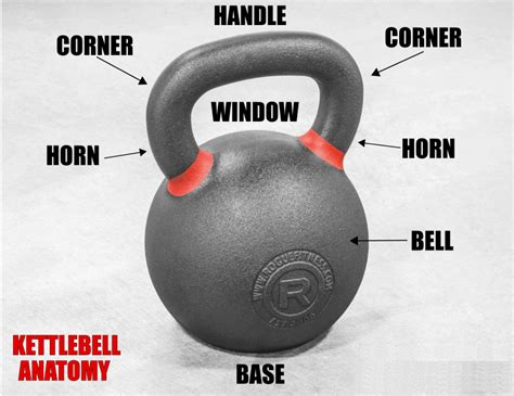 kettlebells kettlebell bell anatomy competition guide fitness handle rogue reviewed gym buyer difference