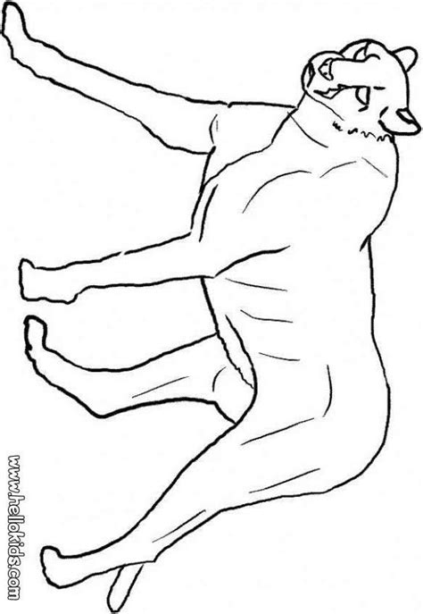 panthers color florida panthers coloring page coloring home
