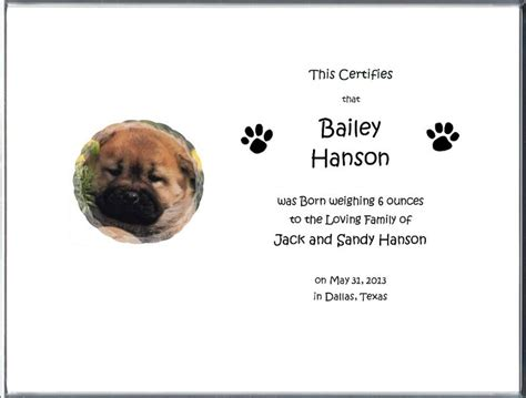dog birth certificates dog birth certificate birth certificates 5 05 your