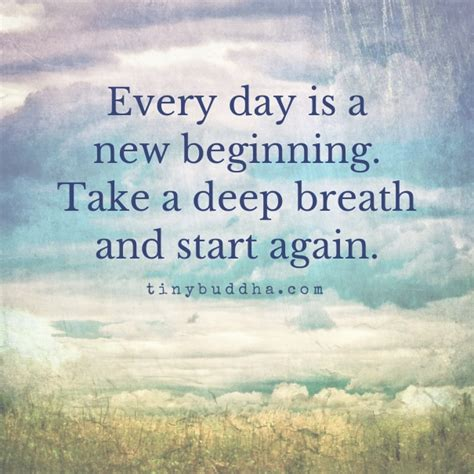 Every Day Is A New Beginning  Wwwpixsharkcom  Images Galleries With A Bite