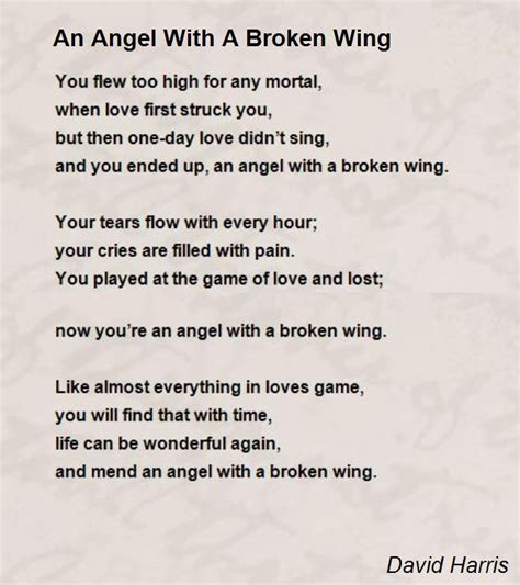 an with a broken wing poem by david harris poem