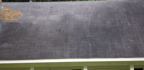 How To Remove And Prevent Black Algae Stains On Asphalt Shingle Roofs Flat Clay Tile Roof Roofing Spring Tx 5v Crimp Metal Green Maintenance Peak To Red Inn Somerset Kentucky Solutions Inc Da Vinci