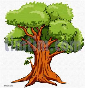 Free drawing of An Oak Tree from the category -Climate ...