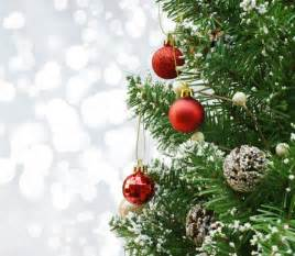a pine tree with christmas decorations photo free download