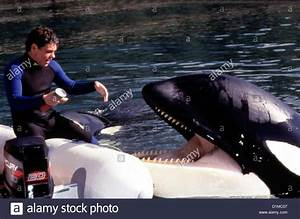 Free Willy 3 - Die Rettung Free Willy 3: The Rescue Jason ...