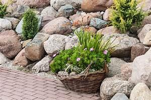 Naturstein Im Garten : naturstein im garten so setzen sie ihn wirkungsvoll ein ~ A.2002-acura-tl-radio.info Haus und Dekorationen