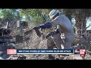 100,000 Killer Bees Attack! Two Men - YouTube