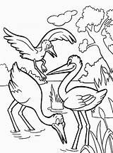 Coloring Pages Stork Birds Printable Storks Worksheets Coloring2print Recommended sketch template