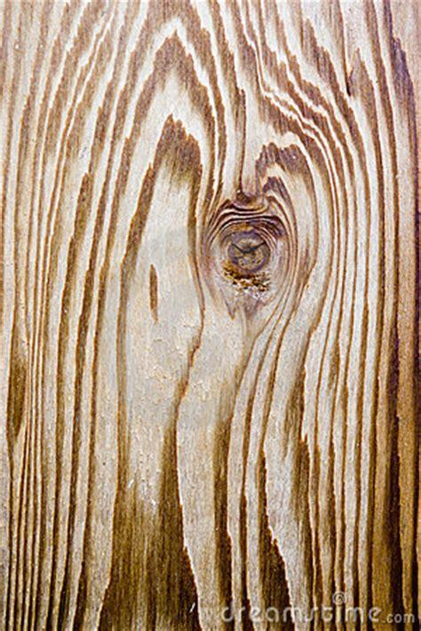 cedar wood grain royalty  stock  image
