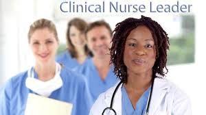 masters  science  nursing clinical nurse leader