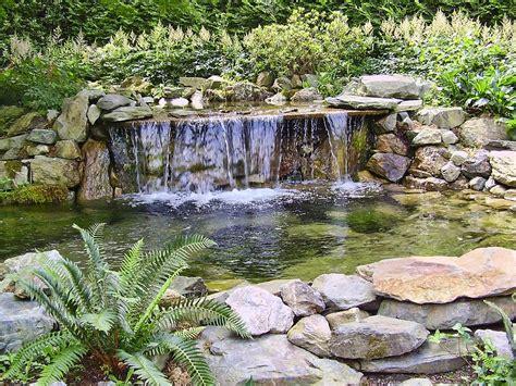 minter garden falls photograph by diana cox