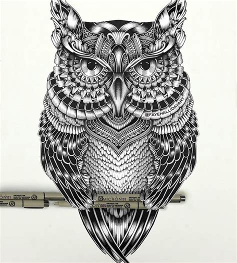 wonderfully unique animal drawings   consist