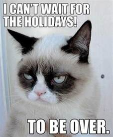 grumpy cats grumpy cat quotes quotesgram