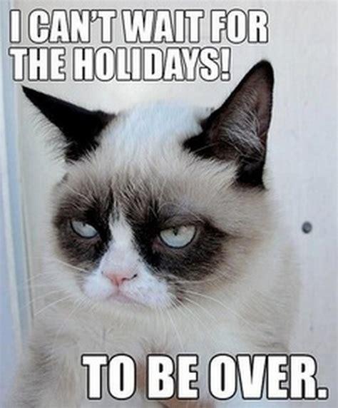 Grumpy Cat Christmas Meme - grumpy cat s christmas compilation 20 pics
