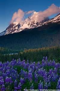 Alaska Chugach National Forest