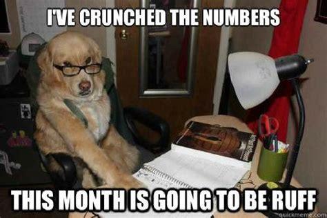 Accountant Dog Meme - financial advice dog know your meme