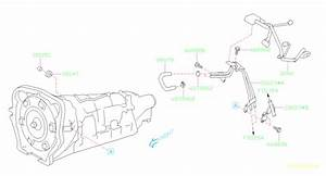 Subaru Brz Pipe Complete